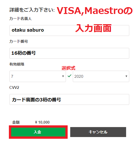 VISA、Maestroのカード情報入力画面